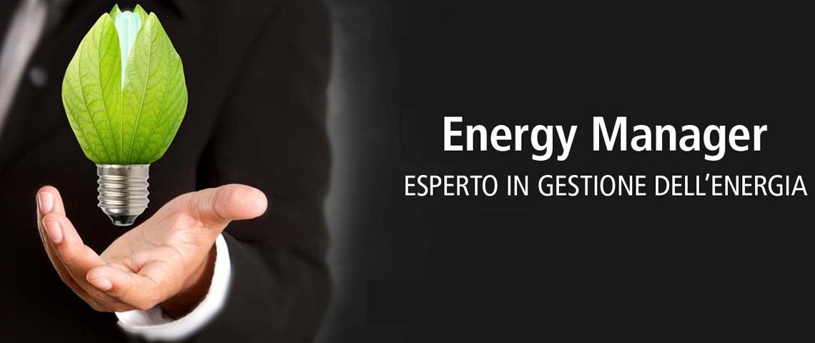 ruolo-energy-manager