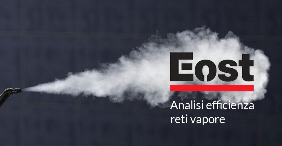 efficienza-reti-vapore-azienda lombardia veneto